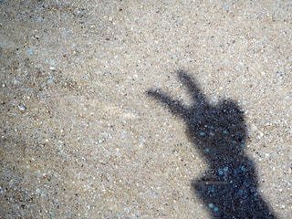 砂浜 ビーチ⛱の写真・画像素材[1378990]