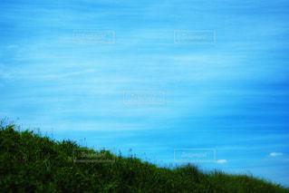 青い空に緑の絨毯の写真・画像素材[1385558]