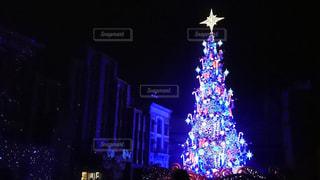 夜ライトアップされたクリスマス ツリーの写真・画像素材[1653210]