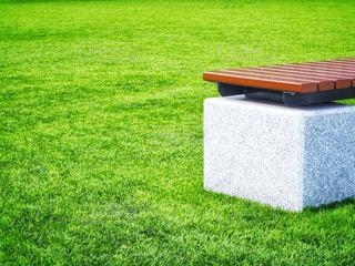 ベンチと芝生フィールドの写真・画像素材[2007369]