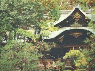 神社の写真・画像素材[2981131]