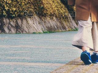 散歩の写真・画像素材[3222417]