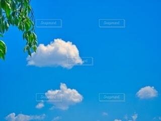 青空の写真・画像素材[3735210]