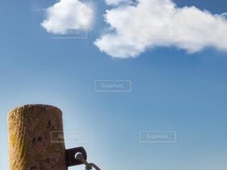 桟橋の杭の写真・画像素材[3778665]