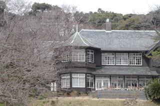 背景の木と家の写真・画像素材[1291104]