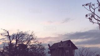 背景の夕日とツリーの写真・画像素材[1693638]