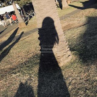 女性の写真・画像素材[1996996]