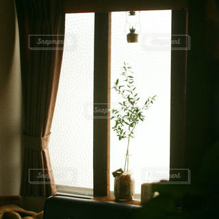 窓の前に花が咲いている花瓶の写真・画像素材[2201226]