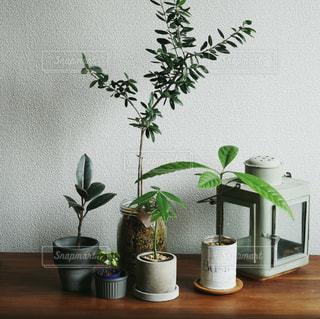 テーブルの上の花瓶の写真・画像素材[2272091]
