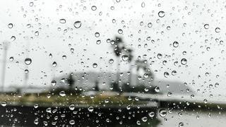雨のクローズアップの写真・画像素材[2283071]