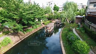 庭の狭い川の写真・画像素材[2283078]