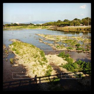 川と橋の影の写真・画像素材[1264562]