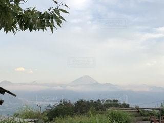 霊峰富士を臨むの写真・画像素材[1261285]