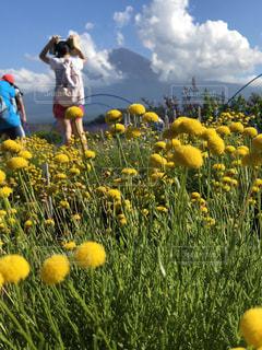 富士山のある風景の写真・画像素材[1280449]