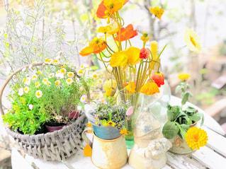 テーブルの上のお花たちの写真・画像素材[1877777]