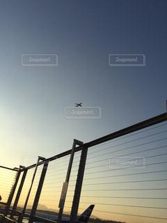 夕日の写真・画像素材[1263228]