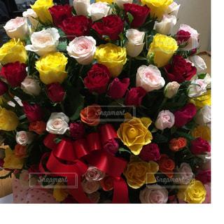 薔薇の花でいっぱい!の写真・画像素材[1267879]