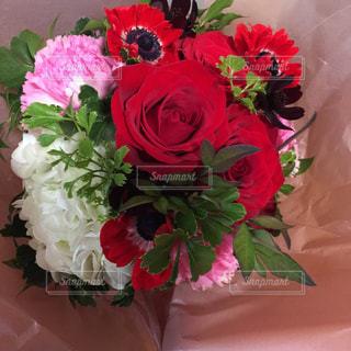 綺麗な花束の写真・画像素材[1267889]