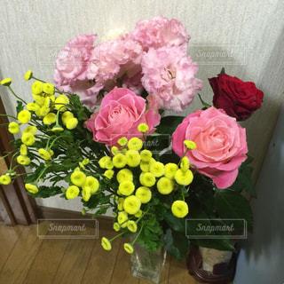 ピンクの花で一杯の写真・画像素材[1267893]