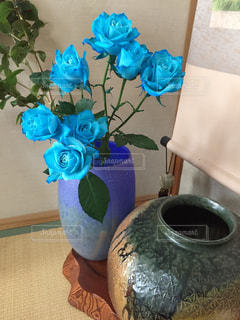 青い薔薇の写真・画像素材[1267915]