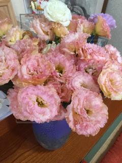 ピンクのお花の写真・画像素材[1268328]