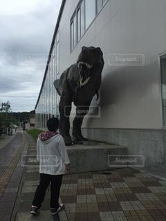 恐竜を見ている男の子の写真・画像素材[1271738]