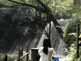 滝を見ている少女の写真・画像素材[1274029]