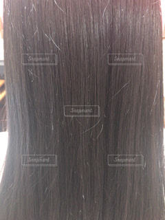 髪の写真・画像素材[1358515]