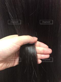 髪を持つ手の写真・画像素材[1358516]