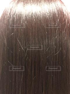 髪の写真・画像素材[1358522]