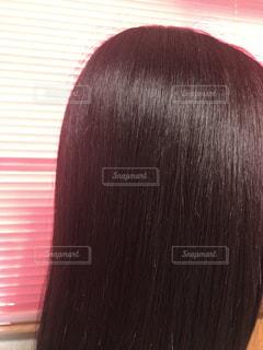 髪の写真・画像素材[1358523]