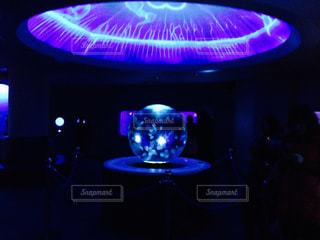 新江ノ島水族館の幻想的なクラゲの写真・画像素材[1263594]