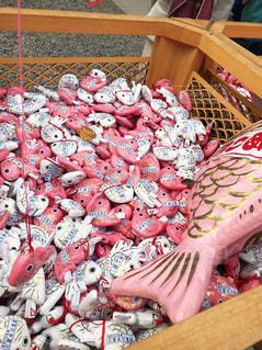 川越氷川神社の、あい鯛おみくじの写真・画像素材[1756818]