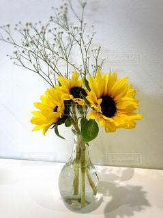 部屋にある花の写真・画像素材[1769218]