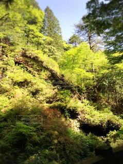 榛名神社の写真・画像素材[1782636]
