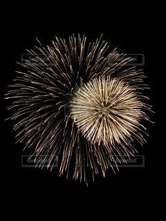 夜空の花火の写真・画像素材[3288093]