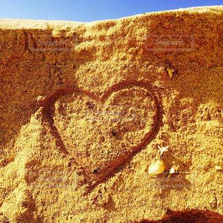 近くの岩のアップの写真・画像素材[1325329]