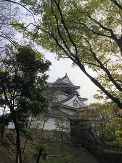 岡崎城の写真・画像素材[1266596]