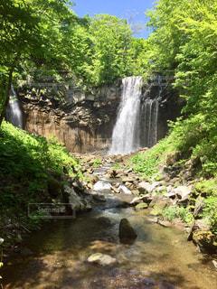 木々 に囲まれた滝の写真・画像素材[1265828]