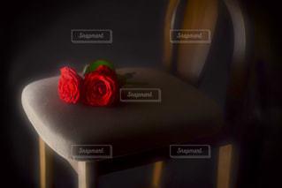 薔薇と椅子の写真・画像素材[1281290]