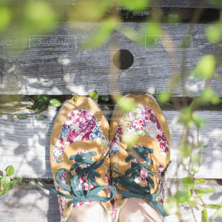 葉っぱの影模様の写真・画像素材[1435005]