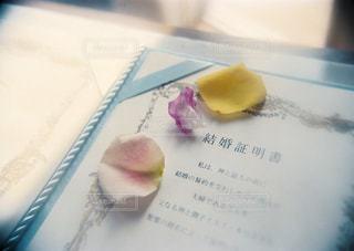 結婚証明書の写真・画像素材[1444678]