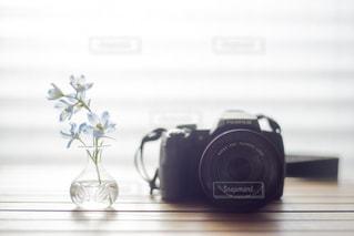 お花と写真の写真・画像素材[1451154]