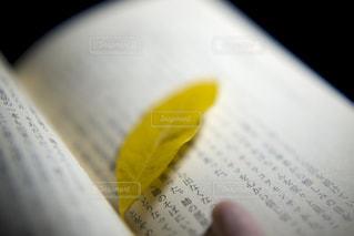 栞の写真・画像素材[1565357]