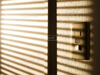 朝の光の写真・画像素材[3584646]