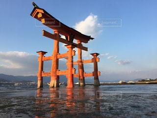 宮島の鳥居の写真・画像素材[1281057]