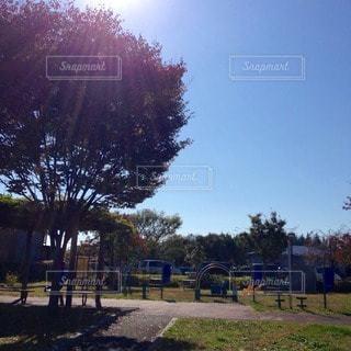 公園 - No.48191