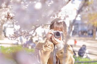 桜との写真・画像素材[2004004]