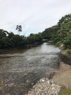 五十鈴川の写真・画像素材[1267964]