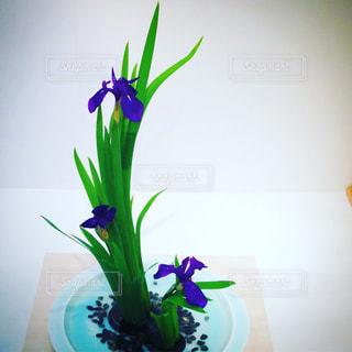 テーブルの上に花瓶の花の花束の写真・画像素材[1505710]